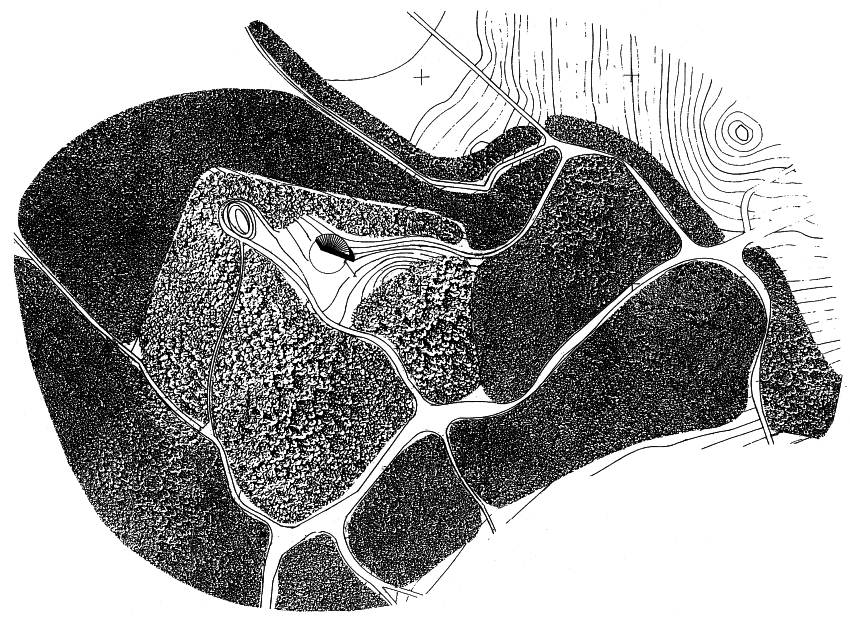 Lega spominske kapele ob grobišču pod Krenom v Kočevskem Rogu