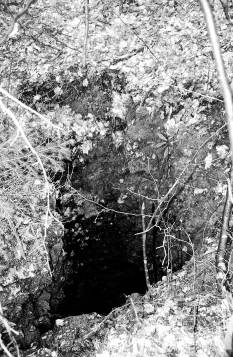 Ajharjevo brezno - Kriki v noči