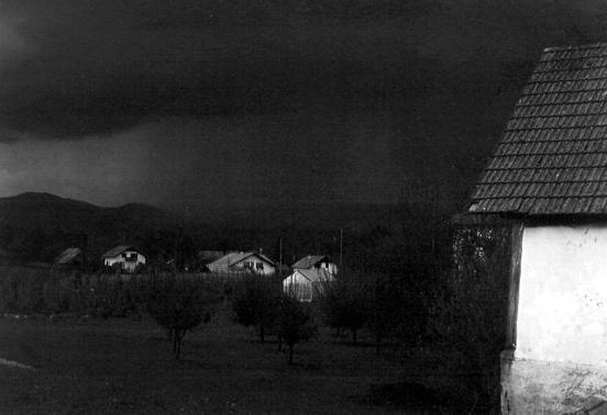 Tik pred nevihto Mirko Kambič