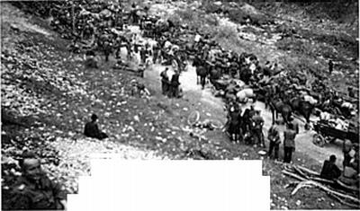 Ljudje in vozovi v Podljubelju 10. maja 1945