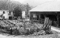 Nedeljsko popoldne na Burgarjevi domačiji v Hrašah leta 1930