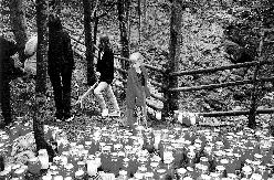 Rog 1999 – Lučke